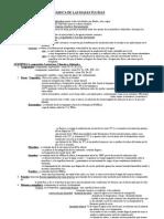 esquema tema 8.pdf