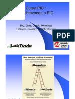 Curso de PIC da Labtools – Mosaico Didactic Division