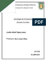 Suicidio sociologia