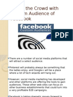 Target the Crowd With Custom Audience of Facebook