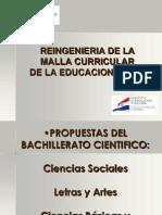 MallaCurricularMECExclusinDelGuarani