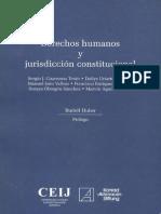 Derechos Humanos y Jurisdicción Constitucional
