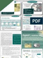 PigMAP - Biomarcador de salud y bien estar porcino