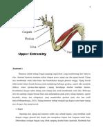Fraktur Suprakondiler Humerus