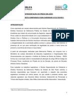 1 - Apresentação Do Preso Em Juízo - Estudo de Direito Comparado Para Subsidiar o PLS 554-2011