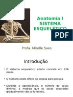 2ª Aula Anatomia I