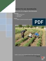 Proyecto_oregano_deshidratado - Santillan, Carmona, Schieda y Vicente