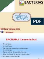 3 Bacterias