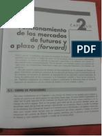 Cap2_Funcionamiento de Los Mercados de Futuros y a Plazo