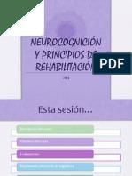 1 Principios de Organizacion Cerebral