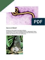 La Verdad Sobre El Ebola