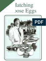 Hatching Goose Eggs