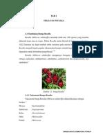 senyawa rosella.pdf