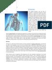 Building Bone Health