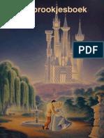 1 Sprookjesboek Voor Kinderboekenweek 2014 Over Feest Van Schoolgoochelaar Aarnoud Agricola