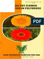 Economic of Gerbera Cultivation in Polyhouse