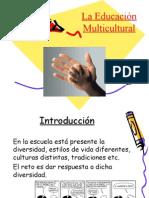 Presentacion multiculturalidad (completa)