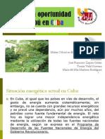 Biomasa La Oportunidad Del Marabu en Cuba