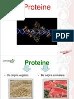 Proteine Vegetale-Animaliere UTM