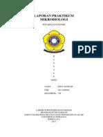 LAPORAN PRAKTIKUM mikro3