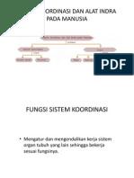 Sistem Koordinasi Dan Alat Indra