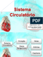 Bioestgio Aula3 131017121228 Phpapp01