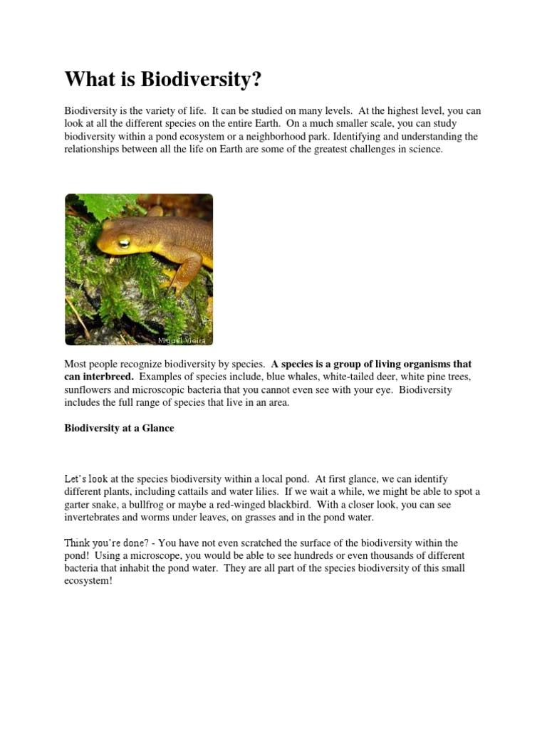 Biodiversity Extinction Biodiversity