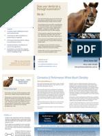 Performance Equine Dentistry Brochure (SA)