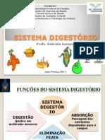1 Sistema Digestorio Infantil 2013 1