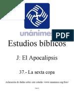 J.37.-_La_sexta_copa