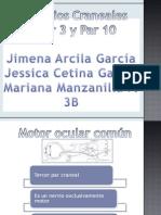 Presentacion Anatomia Pares Craneales