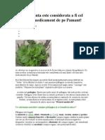 Patlagina