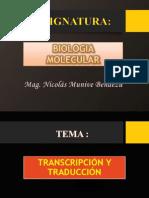 Transcripcion y Traducción (1)