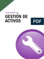 Gestión Activos pág