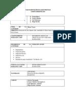 Ficha Planificación Actividades Practicas Segundo Semestre 2014