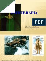 Teoria 4_ - Fitoterapia