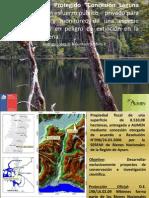 Protección Del Ciervo en Chile