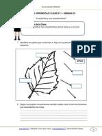 Guia de Aprendizaje Cnaturales 3basico Semana 25 2014