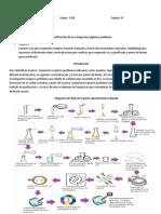 Identificación de un compuesto orgánico.docx