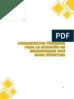 LINEAMIENTOS TECNICOS SODA CAUSTICA.pdf