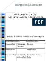 Neuroanatomia completa(1)