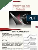 estructuradelensayo-111120203637-phpapp02