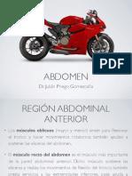 Abdomen Estructura.pdf