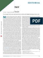 The Mythical Brain