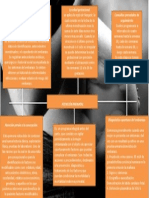 mapa conceptual atencion prenatal.pptx