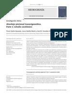 Abordaje pterional transcigomático.