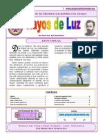 Rayos de Luz 07 Jul 2014