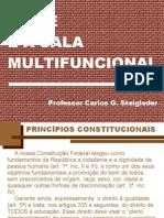 O AEE e a Sala Multifuncional-1