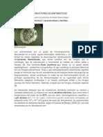 Actinomicetos Productores de Aantibioticos