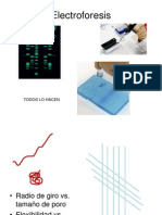 2B -Electroforesis Moleculas Individuales de DNA -DG -BMC2014